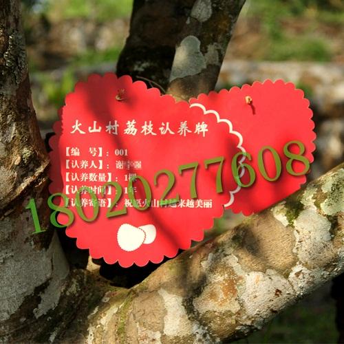 供应果园树木牌制作,果树植物标牌定制
